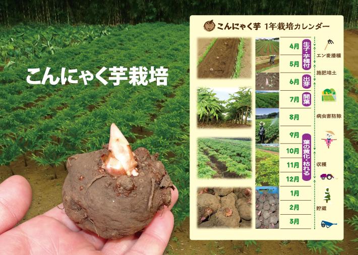 k-tsuruma_Free_00
